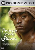 Prince-Among-Slaves