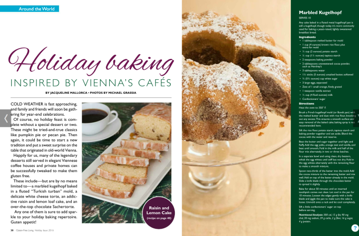 gfl_holday_baking_inspired_by_viennas_cafes_
